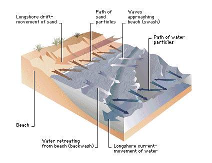 The mechanics of sand transport on beaches